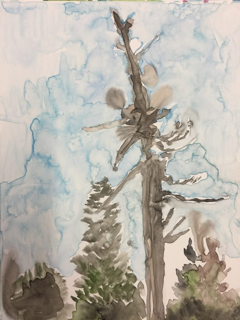 "Tree, Watercolor on Yupo, 12"" X 9"""